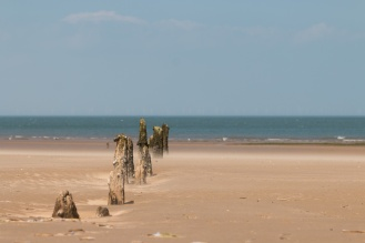 A row of old posts, slowly being worn away by the sea. The haze around the bottom of the posts is dry sand being blown along the beach. It was quite a windy day!