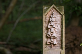 The fourth post on the Pretty Corner Woods trail, a carved picture of foxgloves.
