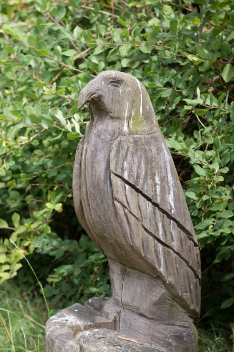 Close up view of one of the carved hawks in the Dewpond Enclosure of Whipsnade Tree Cathedral. Photos from a walk around National Trust Dunstable Downs and the Whipsnade Estate SSSI's, in the Bedfordshire area of Chilterns AONB.