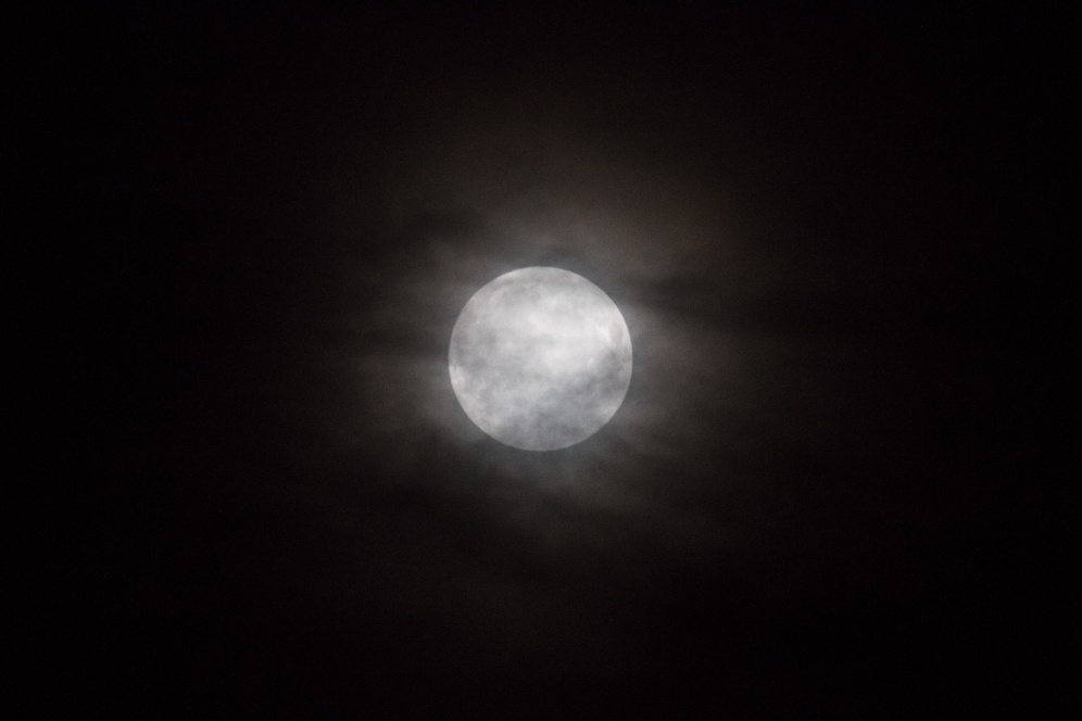Last night's supermoon, shining through a thin layer of cloud.