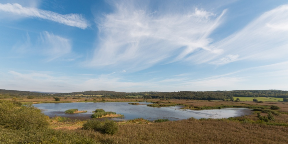 View across part of the reserve from the top of the Sky Tower. Photos from a trip to RSPB Leighton Moss nature reserve in Lancashire.