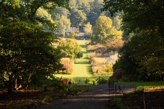 Looking from the Woodland Garden down through the flower beds and up to The Pavillion. Photos from RHS Harlow Carr in North Yorkshire.