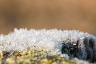 Ice crystals from the heavy frost at the Ouse Washes, on the handrail of the steps up to a birdhide.