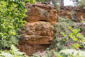 Sandstone cliffs in the old quarry. Photos from a visit to RSPB HQ The Lodge at Sandy.