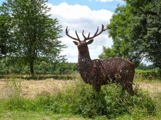 Metal sculpture of a deer stag, out in the wildflower meadow. Photos from a visit to Coton Manor Gardens in July 2017.