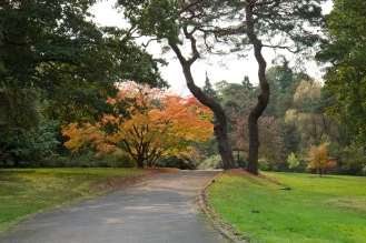Autumn colour setting in at Exbury Gardens in Hampshire.